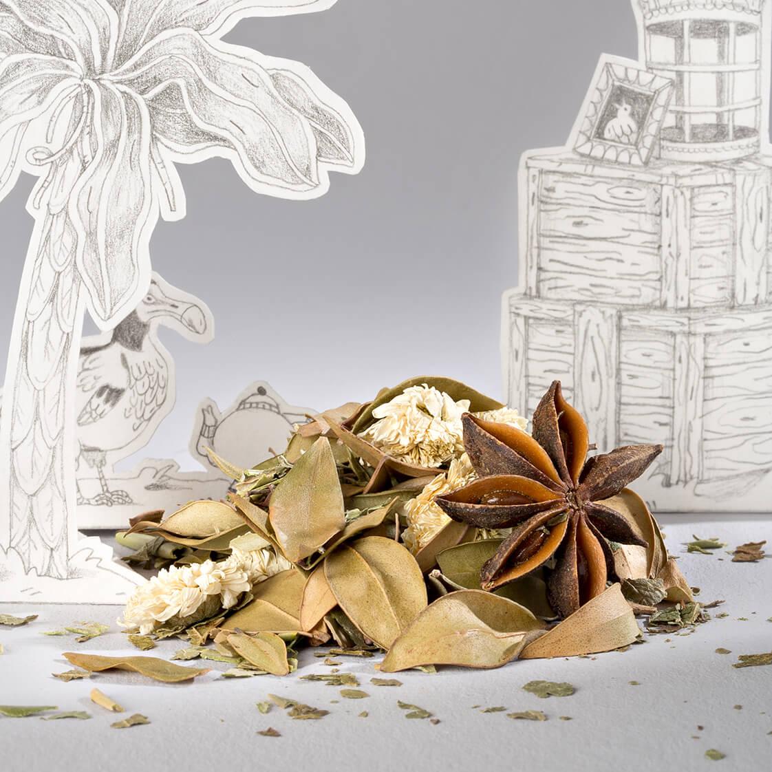 L'infusion La blanche colombe est une tisane détox, purifiante et drainante de la collection Portraits d'oiseaux de Comme des tisanes.
