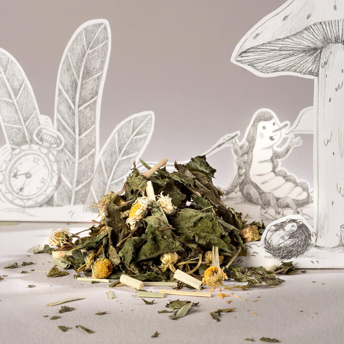 Les plantes médicinales de l'infusion Le lapin blanc.