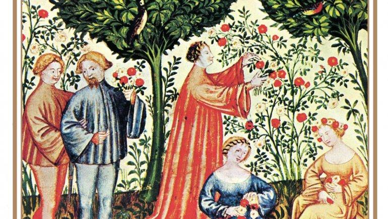 Savoureuses tisanes et délices de jardin