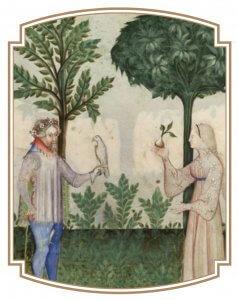 Menthe dans un Tacuinum Sanitatis