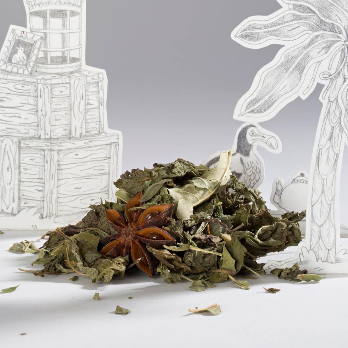 Infusion digestive relaxante l'autruche et le moineau